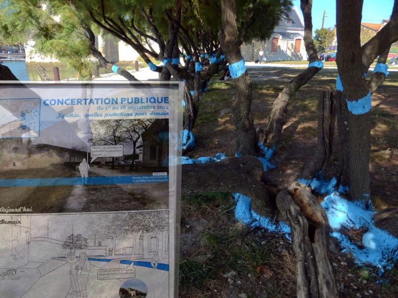 YPH-2014-09-11-concertation-bleue