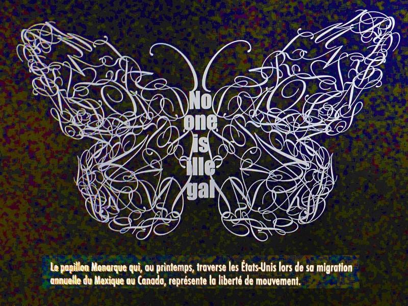 YPH-2014-11-27-P1090206-papillon
