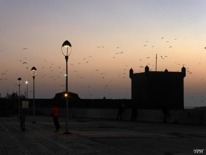 YPH-2014-12-23-Essaouira