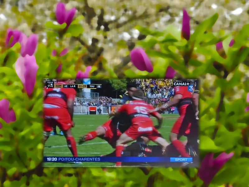 YPH-2015-04-25_rugby