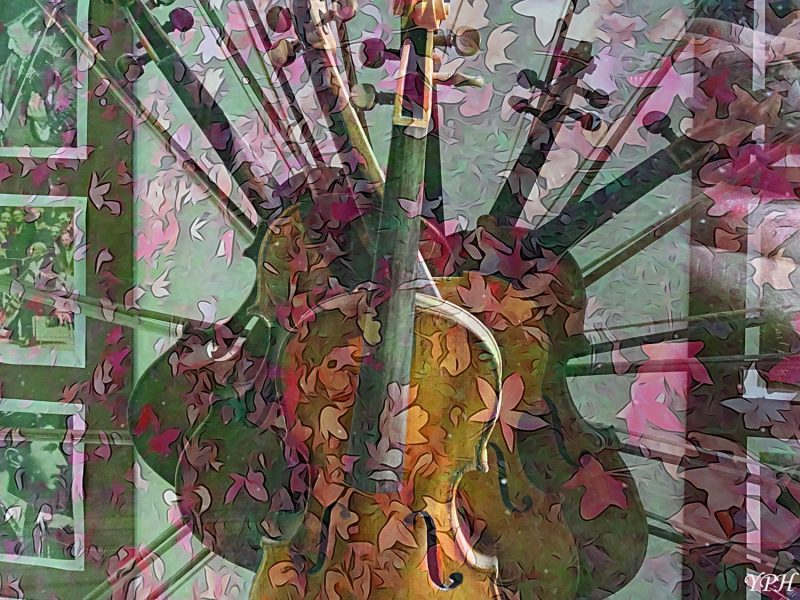 yph-2016-12-15-violons