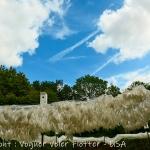 w-YPH-Chaumont-P1013951-Voguer-Voler-Flotter