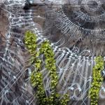 w-12-YPH-street-art-Christchurch