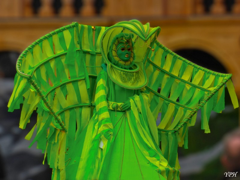 YPH-2014-03-06-masque-vert-w